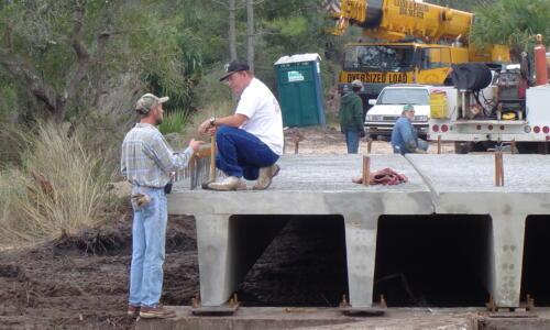 Building a Bridge Across the Salt Marsh